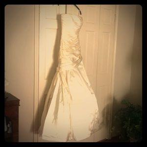 The actual dress!!